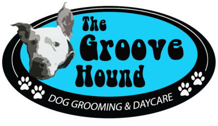 THE GROOVE HOUND